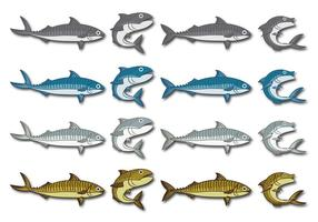 Mackerel vector cartoon illustration