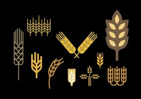 Wheat stalk vector set