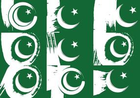 Pakistan Flagga