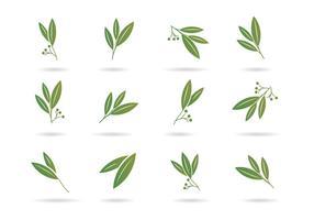 Icônes libres d'eucalyptus