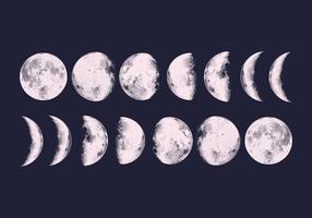 Fases de la Luna del vector