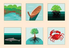 Vecteur de mangrove