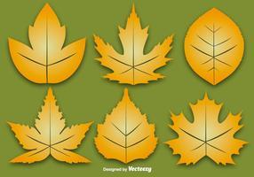 Ensemble vectoriel de six feuilles d'automne