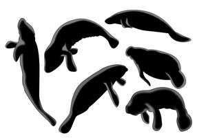 Manatee Silhouette Vector set