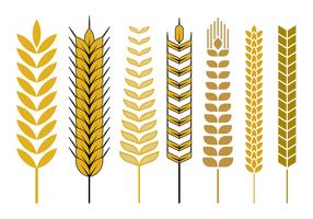 Vector libre de tallo de trigo