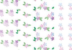 Padrões florais de vetores