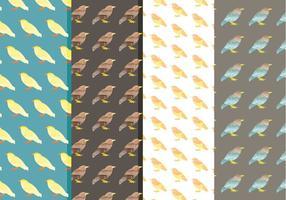 Padrões de pássaros de aquarela vetorial