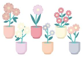 Vector Flower Collection