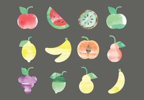 Vector Watercolor Fruits