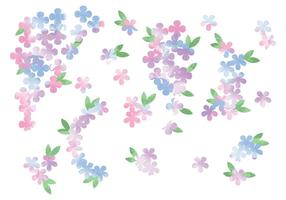 Flores de acuarela vectorial