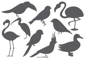 Vektor fågel form samling