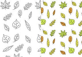 Vetor padrão de folhas livres