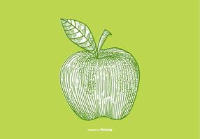 APPLE - LINE DRAWING vector