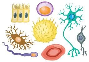 Free Neuron Icons Vector