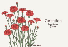 Flores libres del clavel del vector