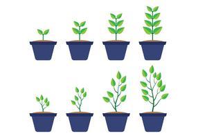 Crecer vector de la planta