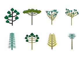 Free Araucaria Bäume Vektor