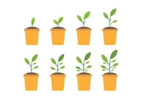 Free Grow Up Plant Icons vector