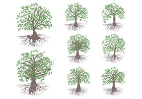 Celtic Tree Vector