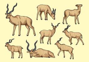Free Kudu Vector