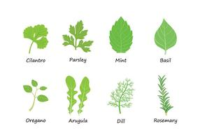 Free Herbs Vector