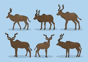 Kudu Vector
