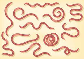Gratis Earthworm Pictogrammen Vector