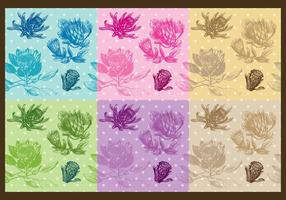 Protea-Muster
