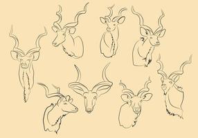 Vettore gratuito di Kudu