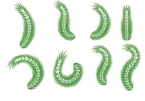 Vecteurs de feuilles du dimanche des Rameaux