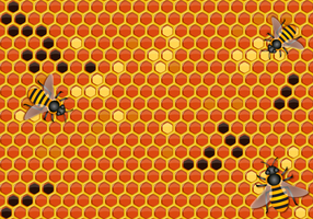 Free Honey Background Vector
