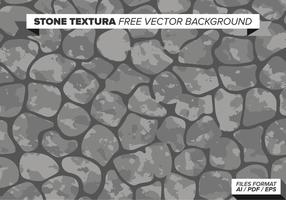 Texture de la pierre fond vecteur libre