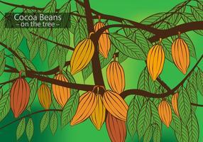 Fave di cacao sul vettore dell'albero