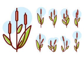 Cattails ícones Vector