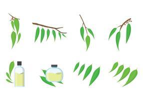 Vecteur gratuit d'eucalyptus