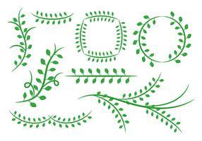 Libere el ornamento floral del verde de las hojas