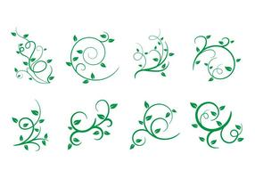 Gratis Liana, Leaves, Vector Illustration