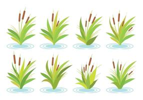 Gratis Cattails Vector