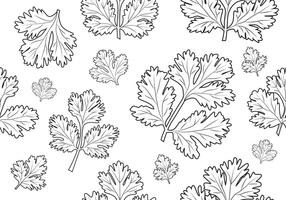 Coriandre - motif transparent