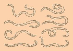 Earthworm icons vector