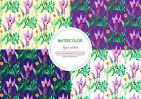 Purple Flower and Thyme Vector Patterns