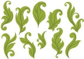 Vectores libres de las hojas