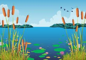 Cattails Vector och vattenliljor vid den vackra sjön