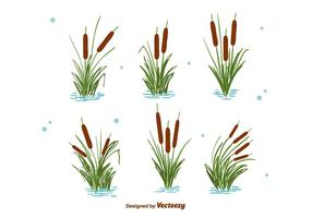 Cattails Set Vector