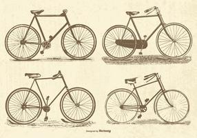 Bicicletas del vector del vintage