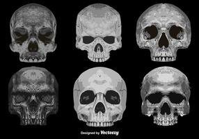 Conjunto de vetores de 6 ícones detalhados de crânios abstratos
