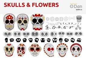Sugar Skulls & Flowers by Dan