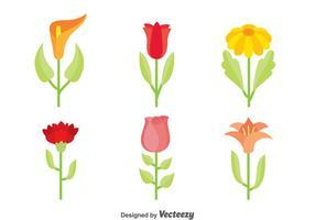 Vackra blommor samlingsvektor