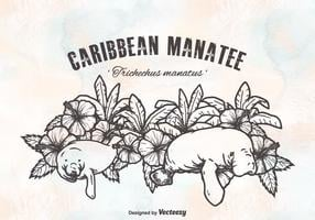 Free caribbean manatees vektorentwurf