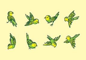 Budgie cartoon vector